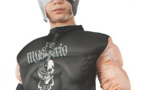 WWE Wrestler Rey Mysterio Jr. Child Halloween Costumes