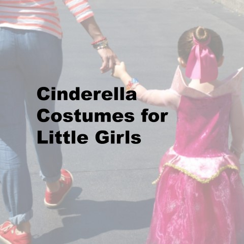 Cinderella costumes for little girls